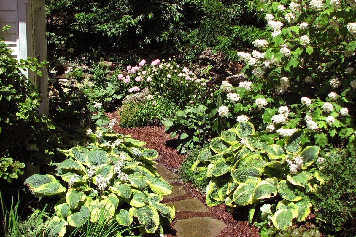 Residential Landscape Architect Planting Garden