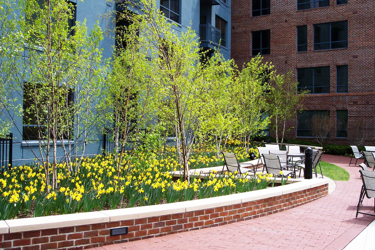 Spring Colors Planting Landscaping Columbus