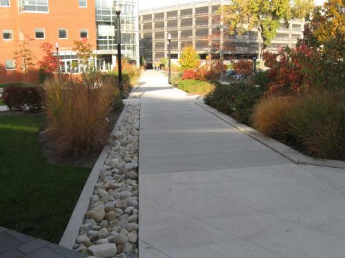 fall colors landscaper path design